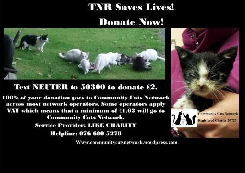 Like Charity Neuter Campaign_Banner