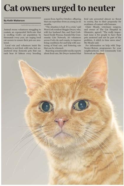 12 06 16 Cork News