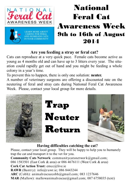 Feral Cat 2014_general poster