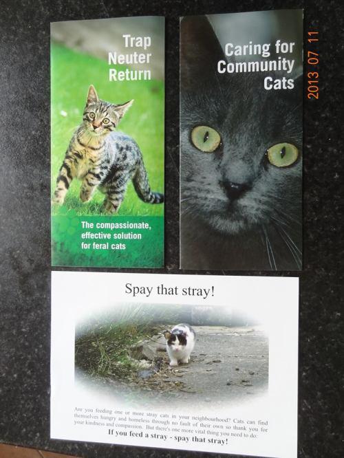 Feral Cat Week leaflets