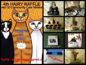Hairy house raffle pic CCN