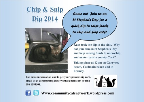 Chip & Snip Dip 2014_poster 2