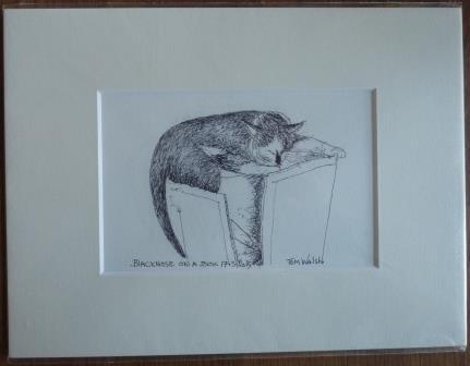 Auction_03_Art_Cat drawing