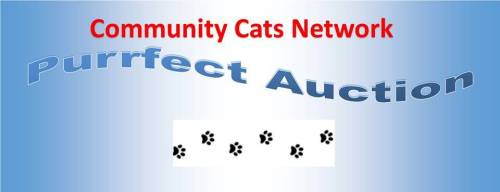 Purrfect Auction