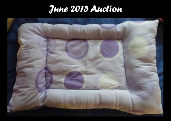 Arty auction 06