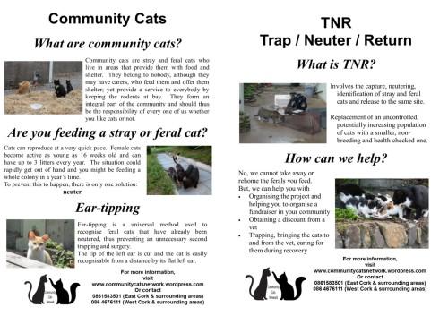 CCN TNR Info poster