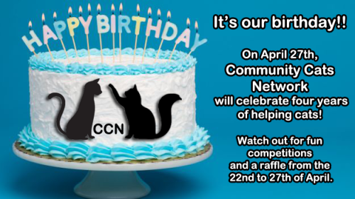 16 CCN Birthday banner