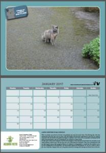 calendar_double-page