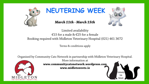 Neutering Week 11-15 March 2019